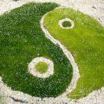 Kameny podle energie Jin a Jang